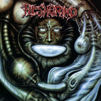 FLESHGRIND - Destined For Defilement