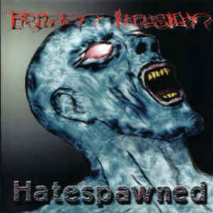 FROZEN ILLUSION - Hatespawned CD