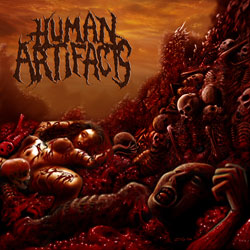 HUMAN ARTIFACTS - The Principles Of Sickness