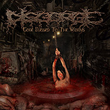 DISGORGE - Gore Blessed To The Worms LP
