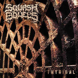 SQUASH BOWELS - Tnyribal CD