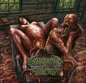EXTIRPATING THE INFECTED - Reborn In Putrefaction CD