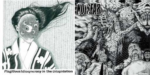 NOISEAR/FLAGITIOUS IDIOSYNCRASY IN THE DILAPIDATION Split CD