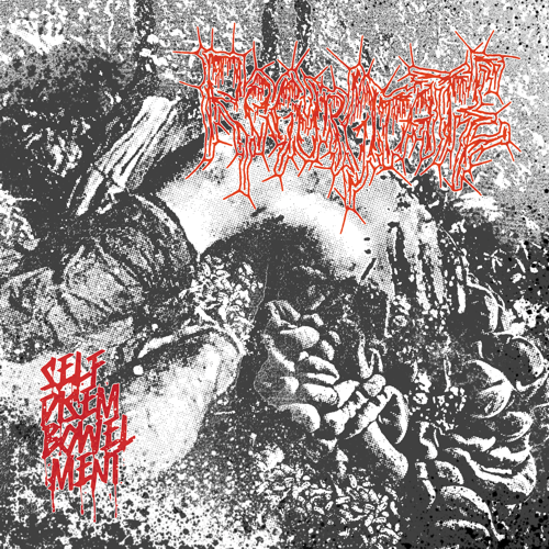 REGURGITATE  - Self Disembowelment CD