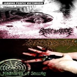REST IN GORE/MAGGOTTHOLAMIA split CD